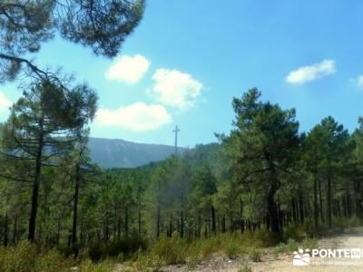 Jarosa - Agua y Bosque Plateado; senderismo entre semana madrid; viajes agosto;excursiones semana sa